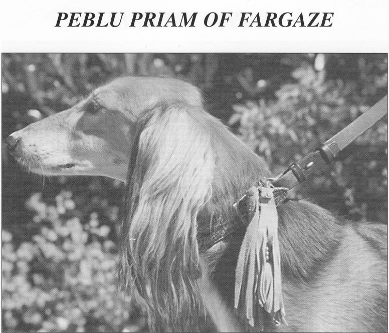 Peblu Priam of Fargaze
